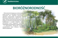 bioroznorodnosc