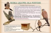 dla-pustulki_2