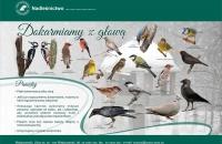 dokarmianie ptakow